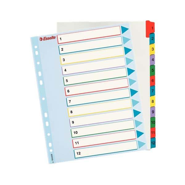 index din carton reinscriptibil a4 maxi esselte 1 12 color 9849
